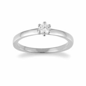 Ring · F1311W
